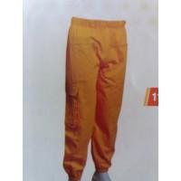 Pantalon apicol